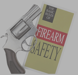 firearm safety book